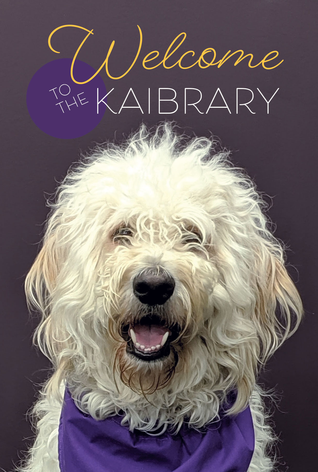 Join us for Kaibrary Tours on Wednesday, September 1